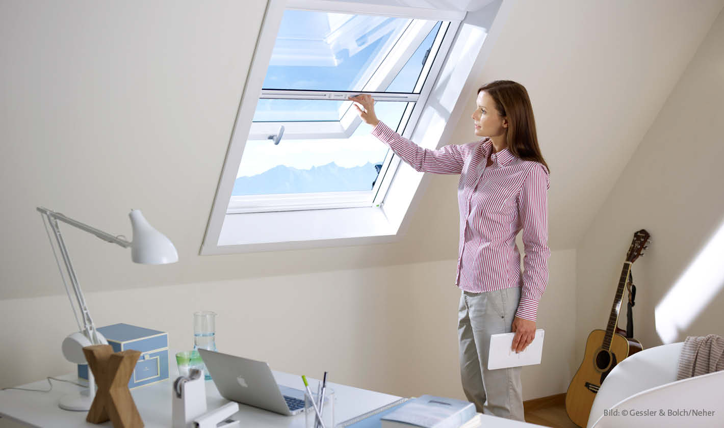 Insektenschutz Dachfenster Rollo, Rolladen Widmaier - Renningen