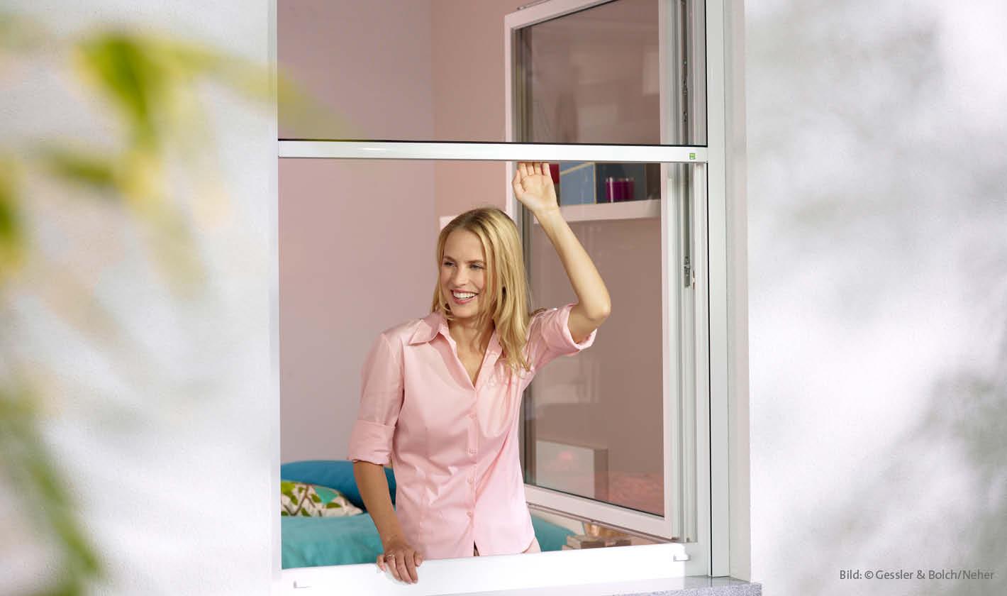 Insektenschutz Rollos für Fenster, Rolladen Widmaier - Renningen